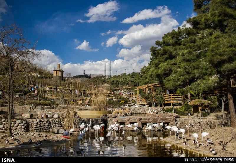 عکس از باغ پرندگان مشهد
